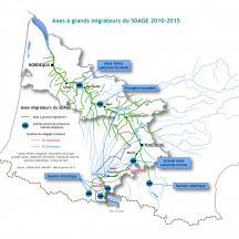 Carte localisation des grands migrateurs