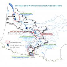 Interrelations des zones humides alluviales
